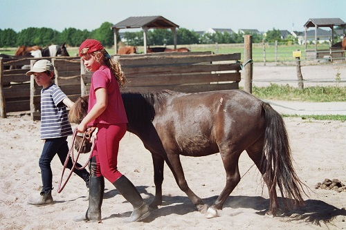 Schulferien auf dem ponyhof - 5 5